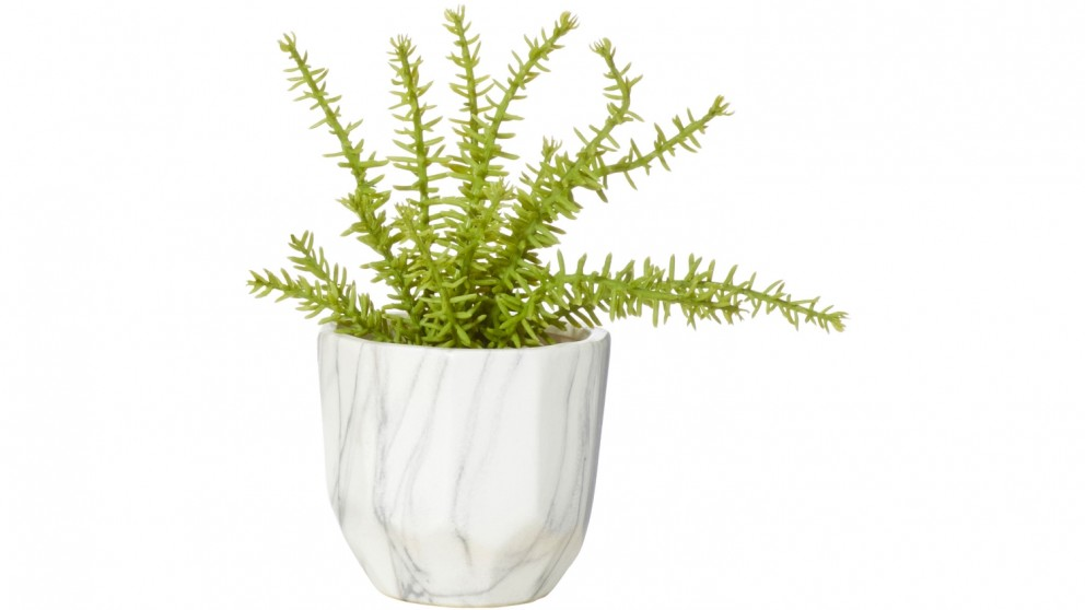 Leather Fern 20cm in Marble Look Pot