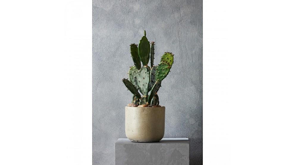 Desert Cactus 31cm Decorative Plant