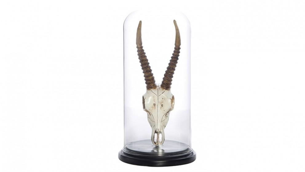 Dorset Impala Skull Cloche